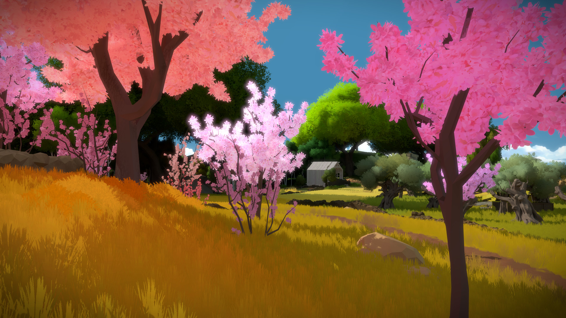 the witness puzzles and repose