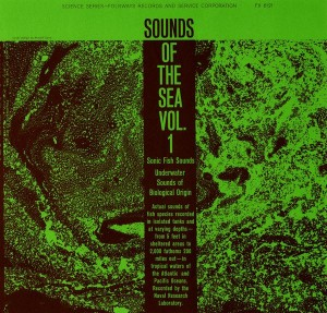 nature recordings sounds of the sea