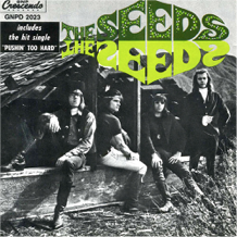garage rock the seeds