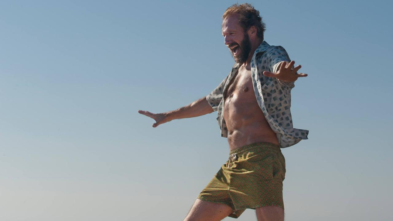a bigger splash fiennes