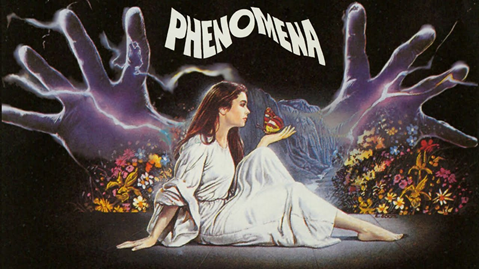 Instant Picks of the Week Phenomena